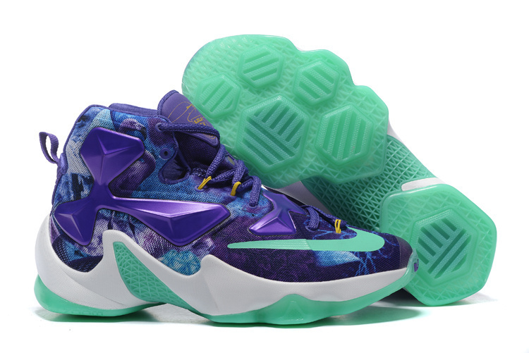 Nike Lebron James 13 25K Custom Purple Green Shoes
