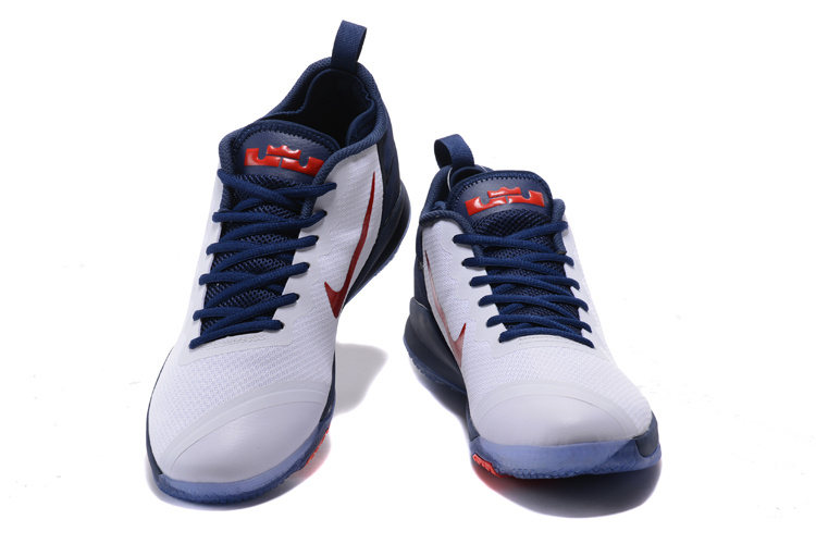 Nike Lebron Wintness 1 Indenpent Day Shoes